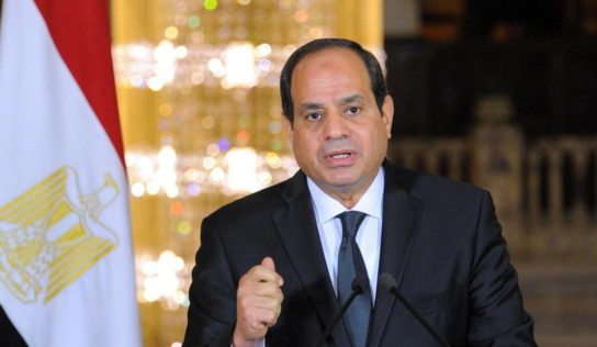 Egypt's Sisi : What happened in Syria was planned by terrorist organizations