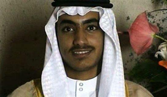 Hamza bin Laden killed near Afghan-Pakistan border
