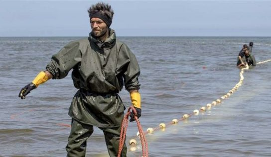 Iran and Russia agree to extend ban on Caspian sturgeon fishing