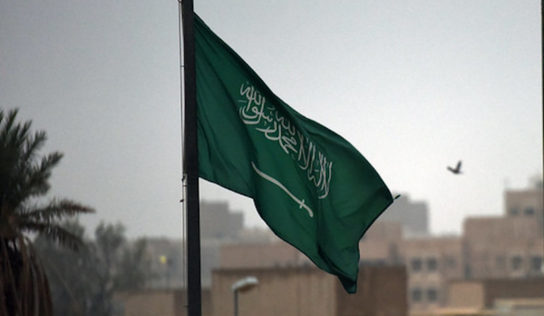 HRW questions grounds for Saudi mass arrests