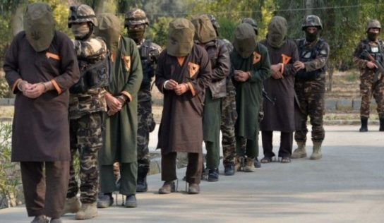 Afghan Govt Reports 100 Taliban Have Been Released