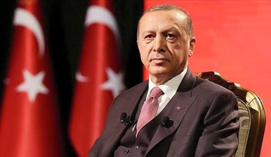 Press review: Erdogan accuses opposition of coup plot and Asian, EU nations ease lockdowns