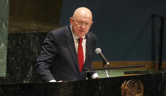 Russia Will Not Support 1-Year Extension of Cross-Border Aid into Syria, Amsassador to UN Says