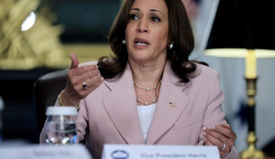 Ex-Kamala Harris Staffers Say 'You Never Knew When She Was Going to Snap at You': Report