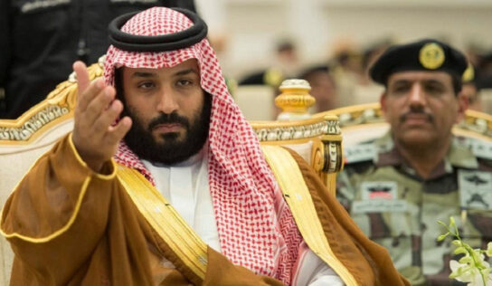 MBS treats any domestic opposition ruthlessly