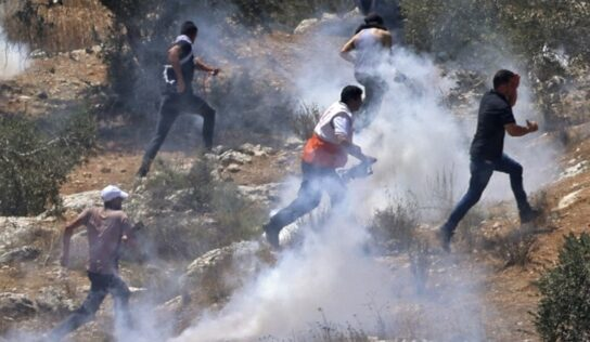 Dozens Injured on Jabal Sbeih During Clashes with Settlers