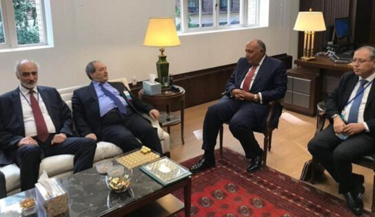 Syrian FM Stresses Importance of Syria-Egypt Relations