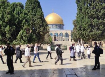 Settlers Storm Al-Aqsa Mosque under Occupation Forces Protection