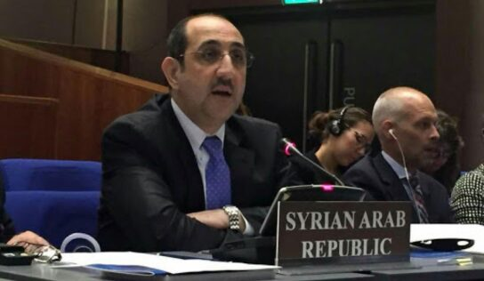Sabbagh: some countries still politicize chemical file in Syria .