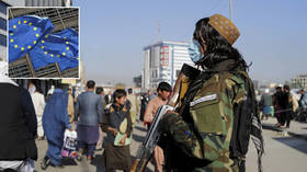'Time to move from talk to action': Senior Russian envoy encourages EU to speed up reopening of diplomatic mission in Afghanistan